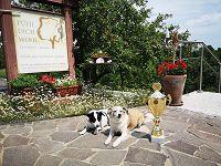 . Platz beim hundehotel.info Award 2021: Landhaus FühlDichWohl- Boutique Hotel